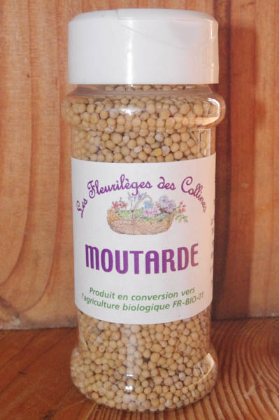 aromates-epices-moutarde-graines_aromates-epices-bio