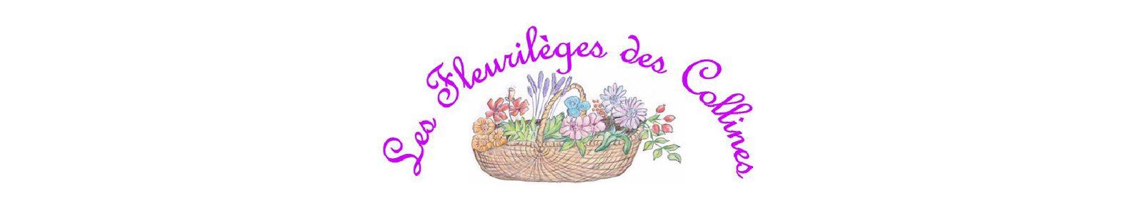 epices-tisanes-huiles-bios_les-fleurileges-des-collines