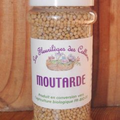 aromates-epices-moutarde-graines_aromates-epices-bio